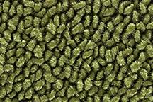 14-Moss Green