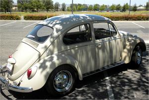 VOLKSWAGON  Beetle, Air cooled